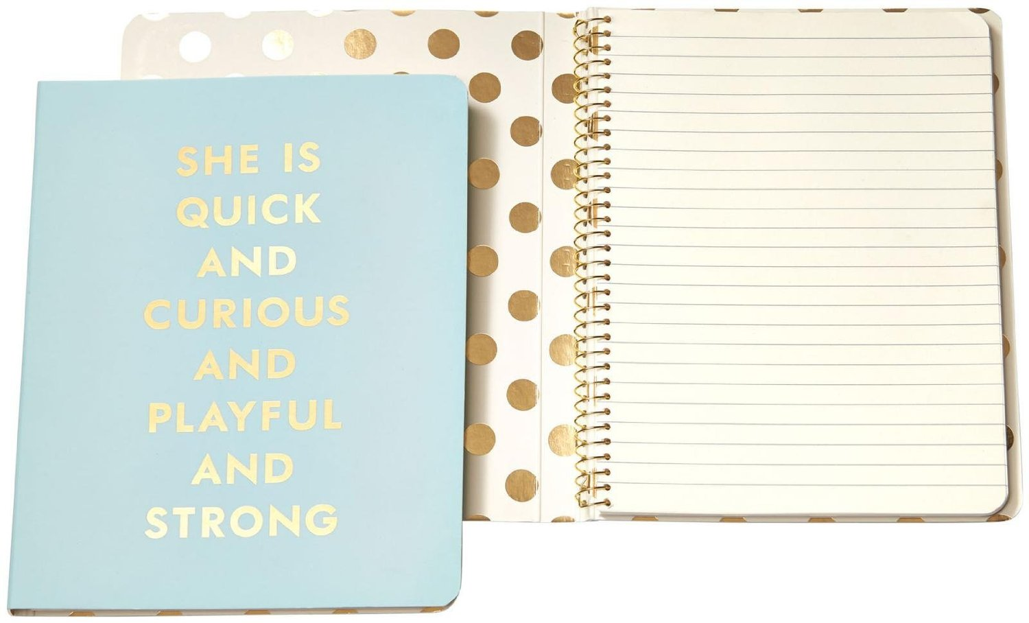 Pretty notebooks make note taking that much more fun! Download a free check list of what to bring to a conference - including this beauty!
